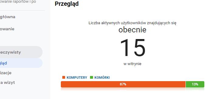 Raport z użytkownikami